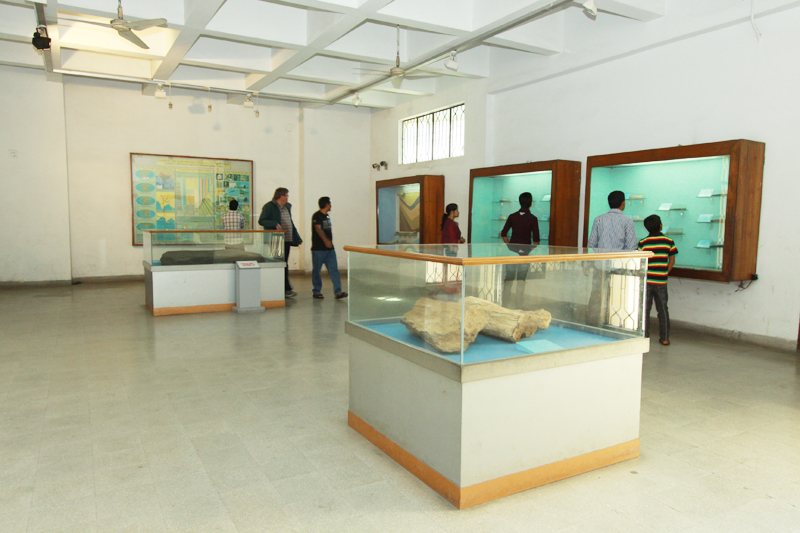 Gallery No-04. Rocks & Minerals